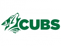 Ireland Cubs winter training squad announced