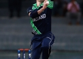 Ireland's bowlers struggled to defend 123