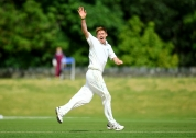 Ireland's Craig Young celebrates taking a wicket